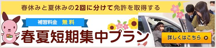 春休み+夏休み短期集中プラン